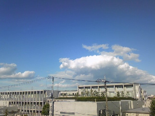 sky blue sky_c0197505_210245.jpg