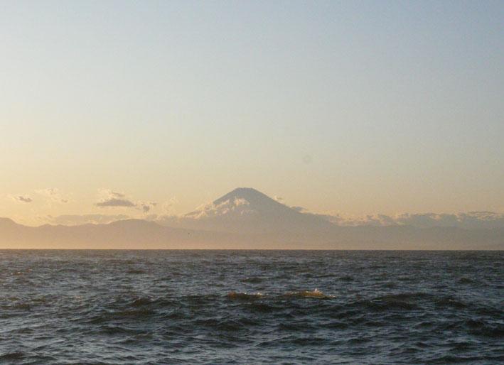 海辺より_f0201310_12322077.jpg