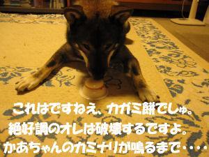 f0143123_2010555.jpg