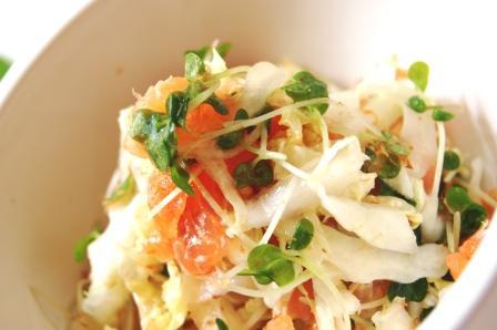 スモークサーモンと白菜のさっぱりサラダとワンプレートランチ☆_d0104926_1565858.jpg