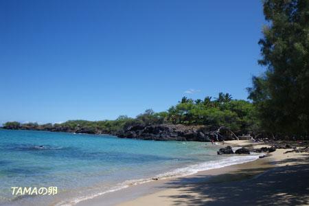 beach 69_c0024729_22342048.jpg