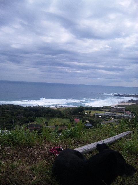 台風の風と共に…_b0181141_2404436.jpg