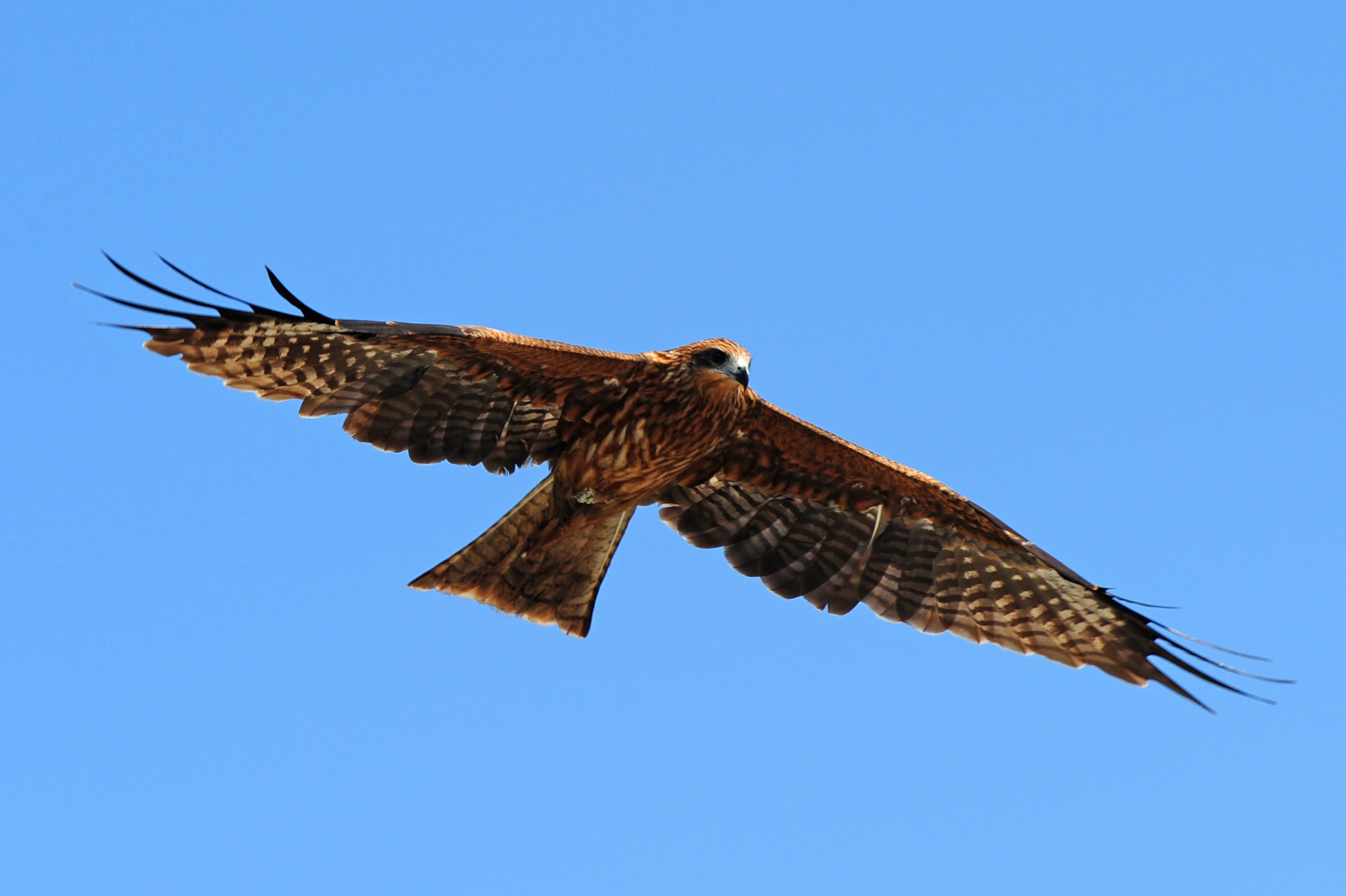 空から見た景色って、、、_e0157647_734132.jpg