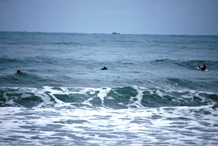 黒潮にのって♪_c0156749_15351137.jpg