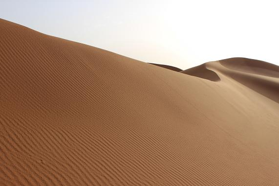 砂紋が美しい