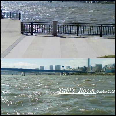 台風一過_d0140490_712826.jpg