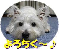 f0084422_20202171.jpg