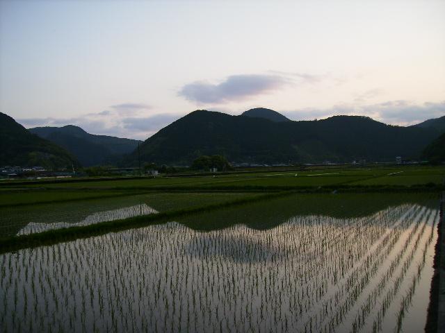 甦る日の喜び 最終回_a0129148_15542096.jpg