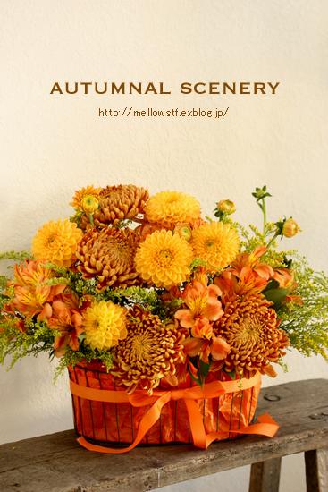 秋色アレンジ。_d0124248_12564488.jpg