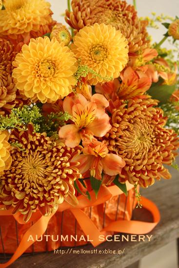 秋色アレンジ。_d0124248_130188.jpg