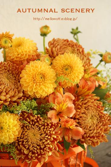 秋色アレンジ。_d0124248_1305945.jpg