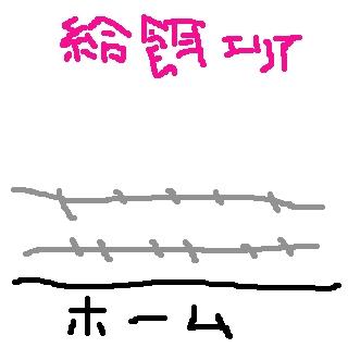 c0026150_1012874.jpg