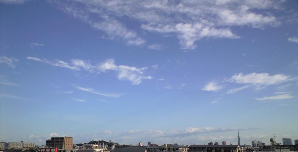 秋の気配!バルコニーからの眺望_d0082356_9174630.jpg