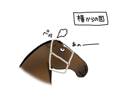 いたずらっこ_a0093189_2241517.jpg