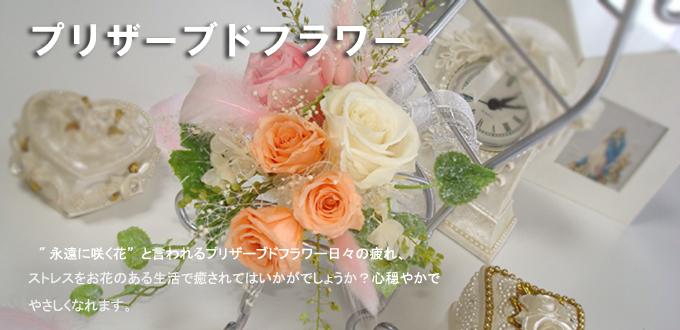 f0136398_21304860.jpg