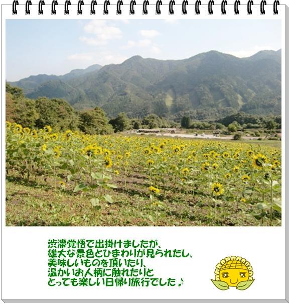 f0182121_1161734.jpg