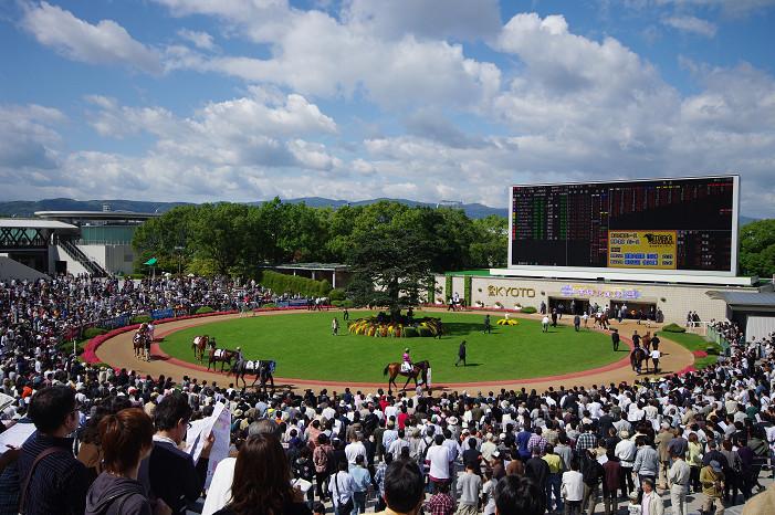 京都競馬場..._f0152550_18323680.jpg