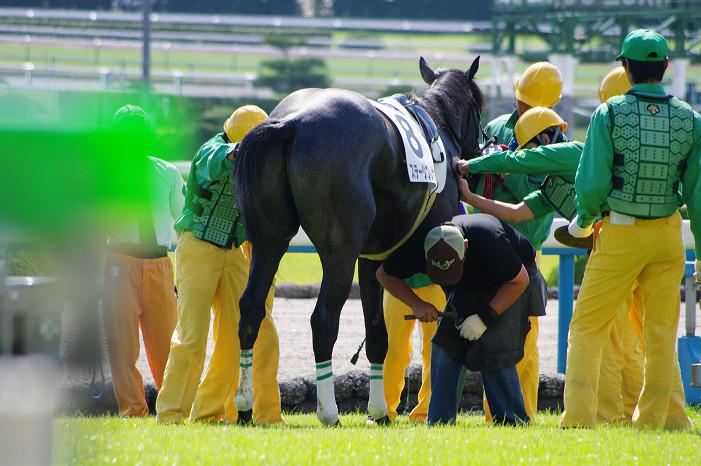 京都競馬場..._f0152550_1834696.jpg