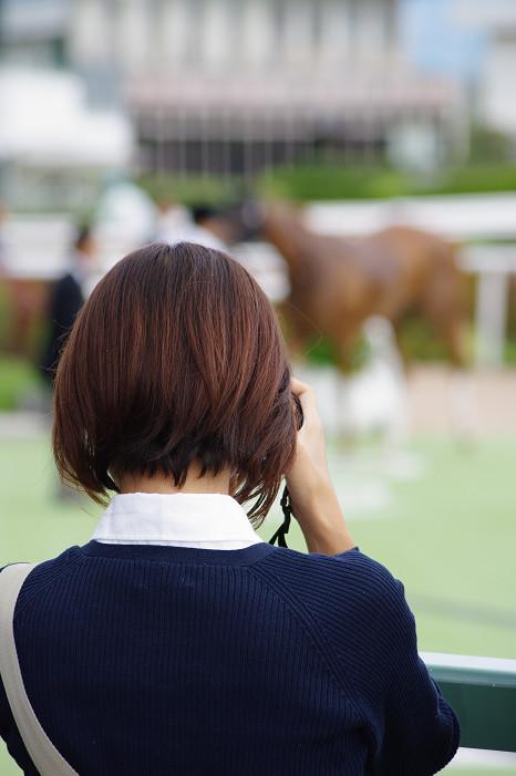 京都競馬場..._f0152550_18374121.jpg