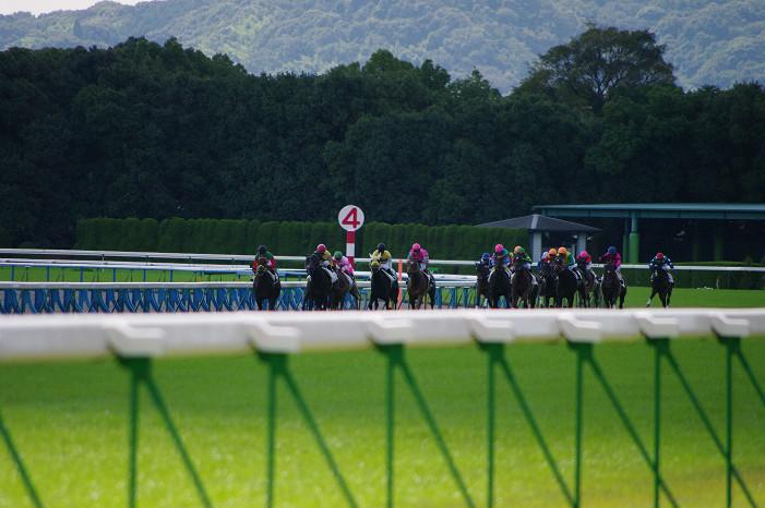 京都競馬場..._f0152550_18384727.jpg