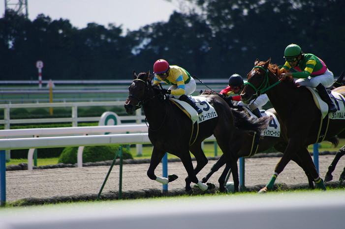 京都競馬場..._f0152550_1839110.jpg