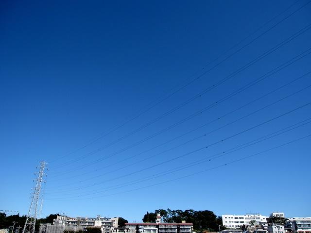 今日という青空。_d0038951_12525984.jpg