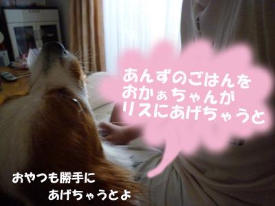 b0170863_0131995.jpg