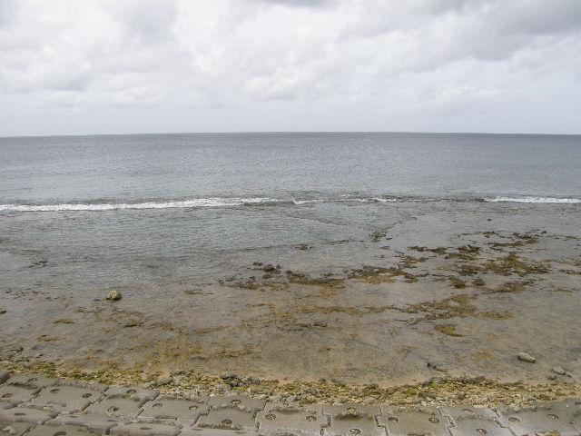 沖縄出張に行ってきた -その2-_f0189467_3103894.jpg