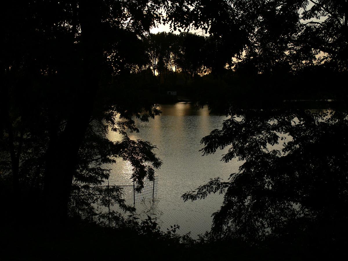 水辺にたゆたふ秋_b0148617_1554844.jpg