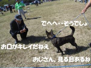 f0143123_943547.jpg
