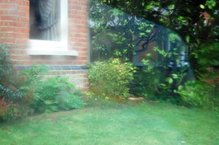 雨のち晴れのさんぽ♪_d0104926_1265285.jpg