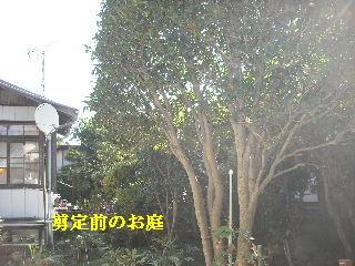f0031037_18493580.jpg