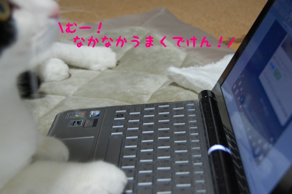 c0181639_1463080.jpg