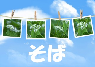 f0031546_12491285.jpg