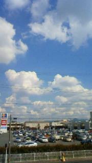 台風一過_d0129766_1112793.jpg