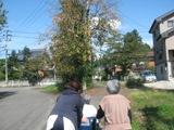秋晴れ_e0142373_2339359.jpg