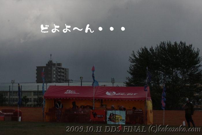 b0124595_1952739.jpg