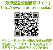 b0145998_0345955.jpg