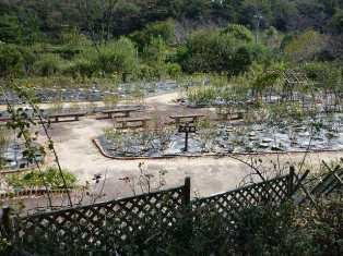 豊田市 西山公園_c0213517_1644010.jpg