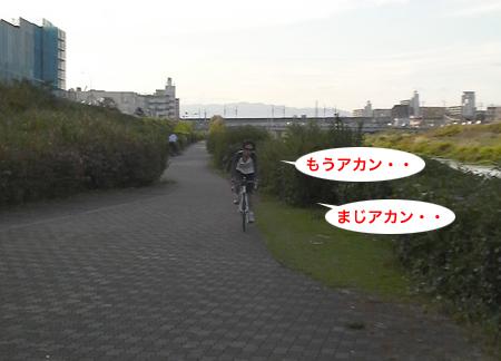 c0176622_2194110.jpg