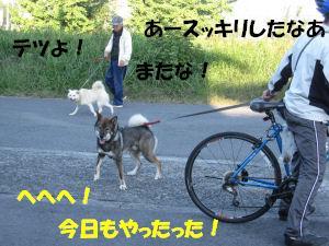 f0143123_20461823.jpg