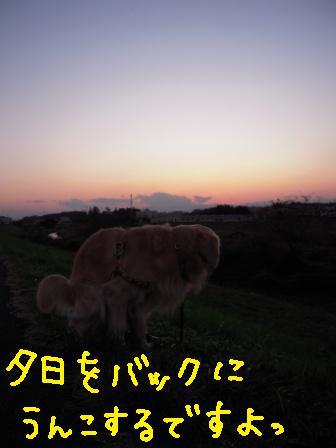 f0176830_21485418.jpg