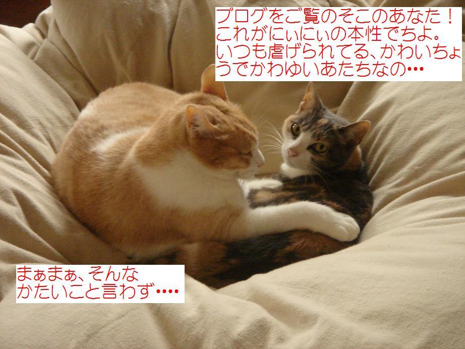 f0131535_12172720.jpg
