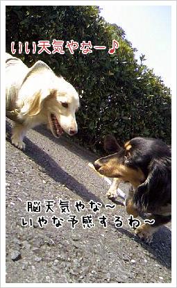 b0014949_18583874.jpg