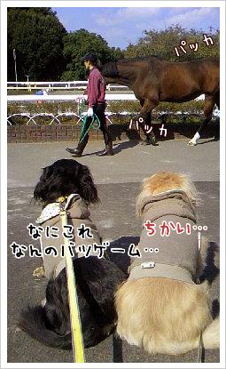 b0014949_18594884.jpg