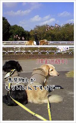 b0014949_190069.jpg