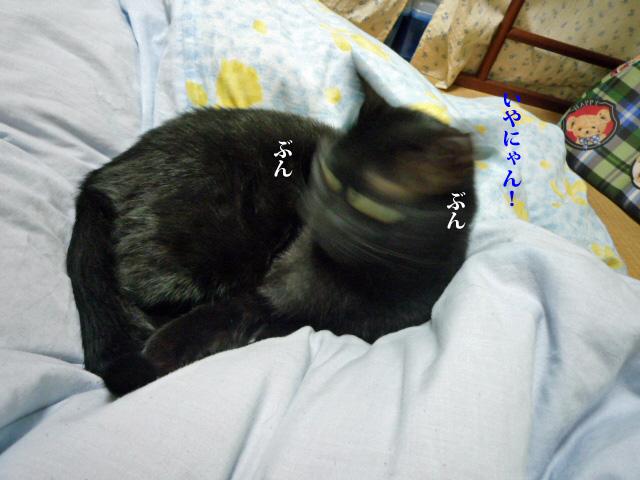 c0183167_2224487.jpg