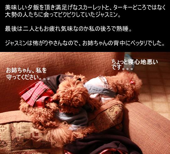 c0164491_984943.jpg