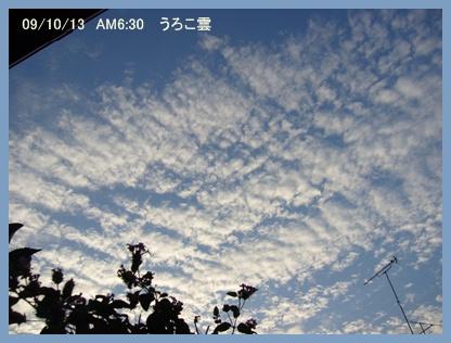 10月13日_c0051105_046289.jpg