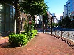 東京夢舞いマラソン_a0036808_01271.jpg